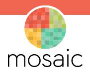 Revista Mosaic
